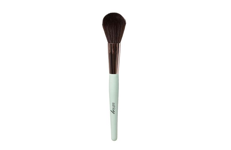 AA-154-02 Ashley Tapered Brush